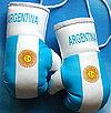 gants argentins