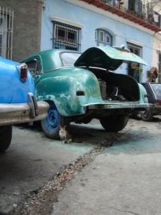 Voyage à Cuba I : La Habana et Rafael Trejo
