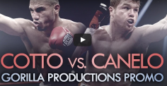 Cotto vs Canelo : J-1