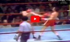[TÉLÉBOXE] Carlos Zarate vs. Alfonso Zamora : combat de coqs à la mexicaine