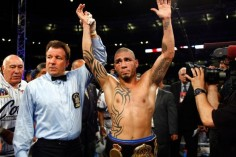 Cotto is back