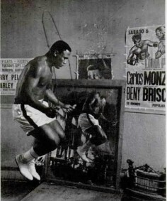 CHIC PIC #44 : Smokin' Joe
