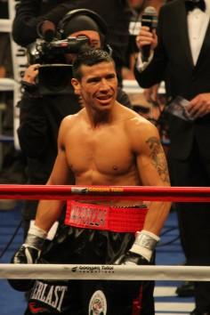 Boxeur de l'année : Sergio Martinez