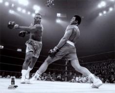 L'intelligence du boxeur