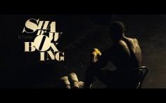 Shadow Boxing by Festen